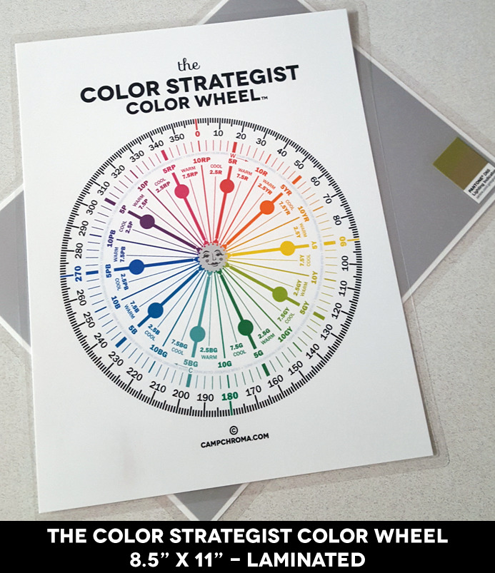 But The Color Strategist Color Wheel