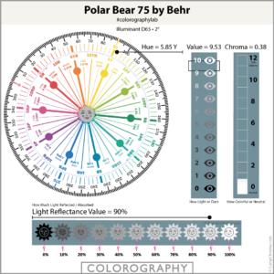 Polar Bear 75 by Behr