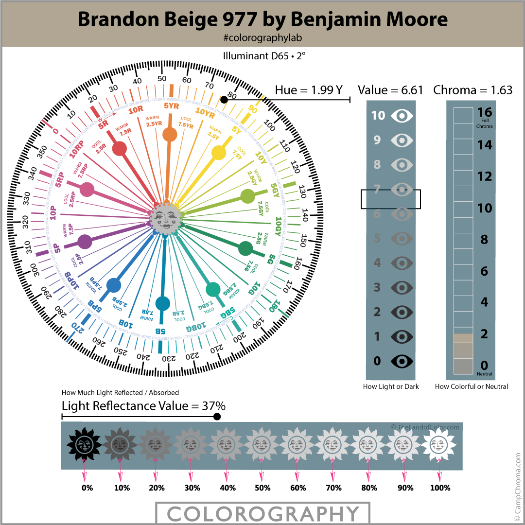 Brandon Beige 977 by Benjamin Moore