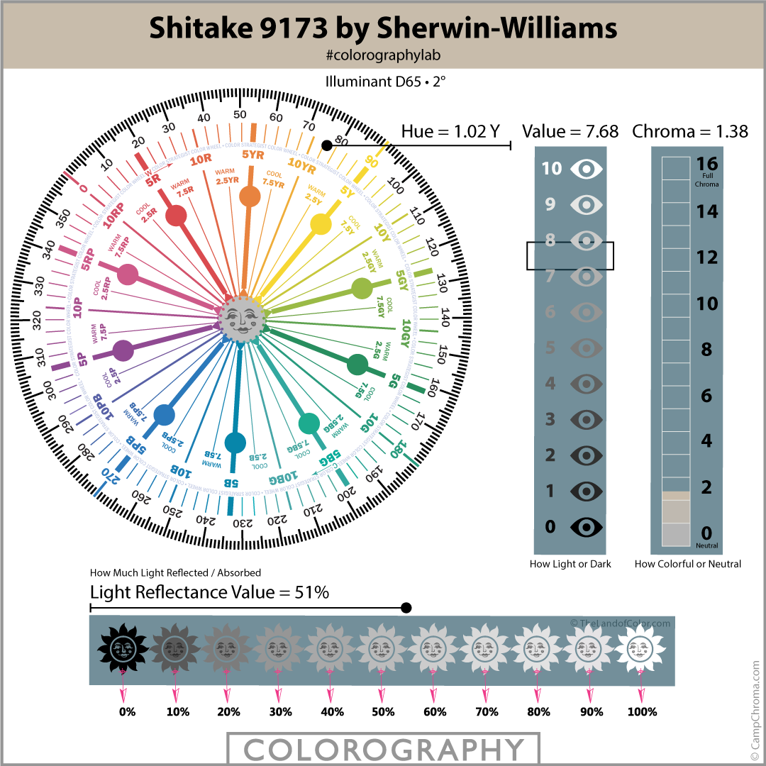 Shitake 9173 by Sherwin-Williams Colorography