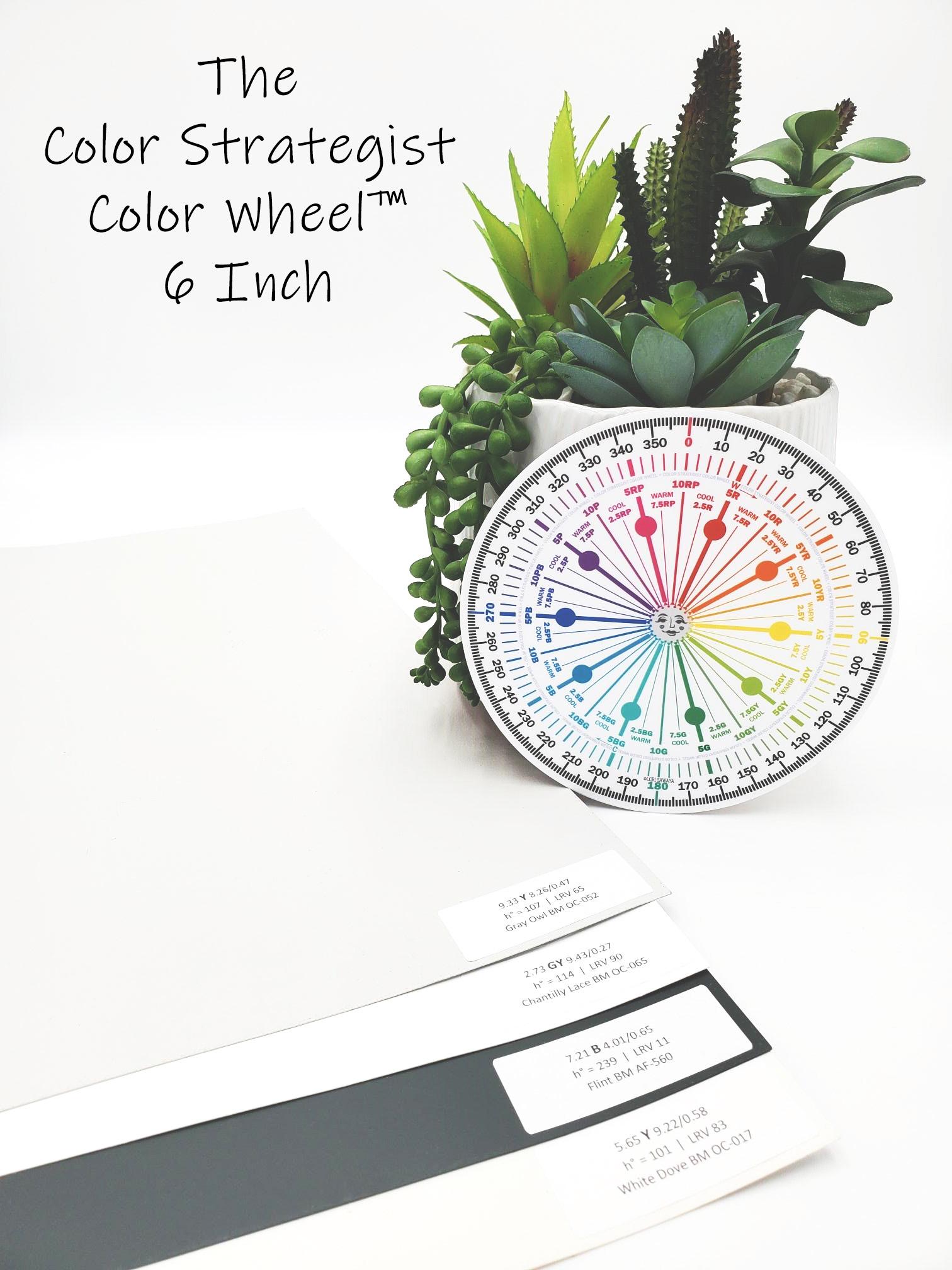 "The Color Strategist Color Wheel 6"""
